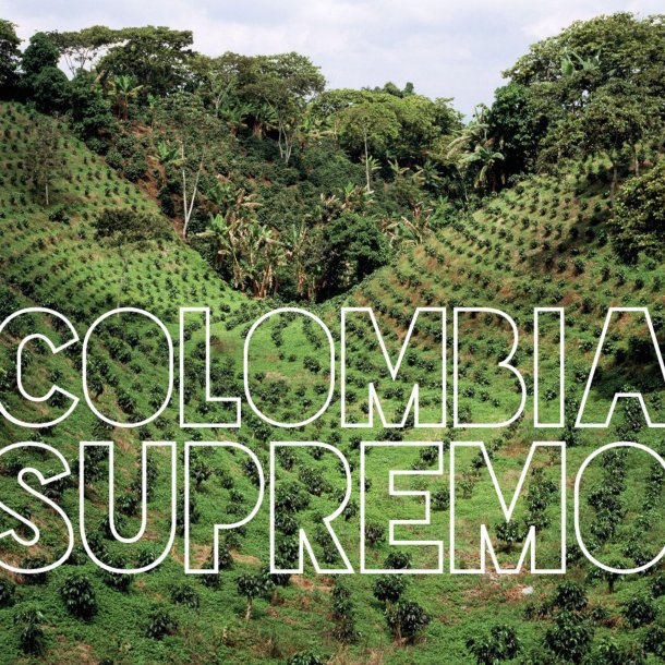 Colombia Supremo (Cafe Sofia)