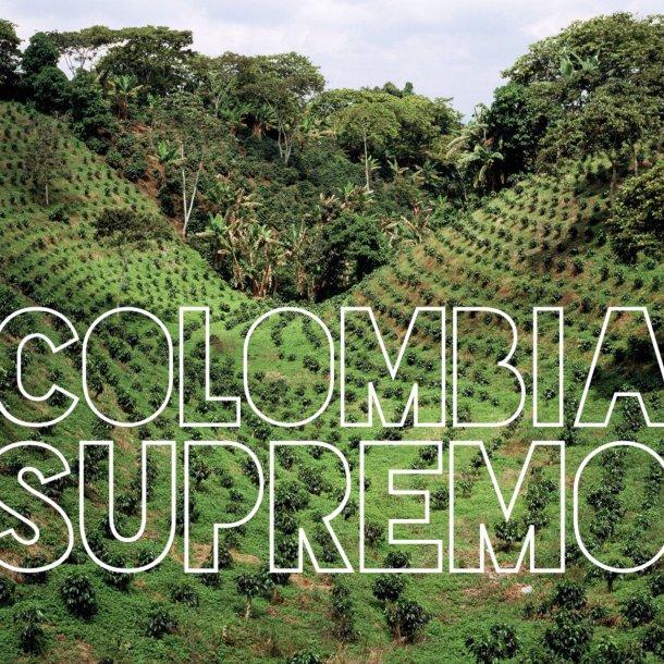 Colombia Supremo Cafe Supremo