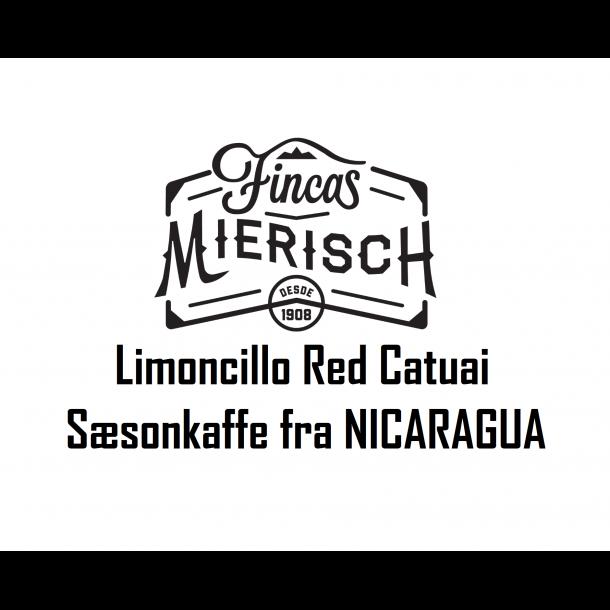 Nicaragua Limoncillo Red Catuai  ¤ SÆSONKAFFE ¤