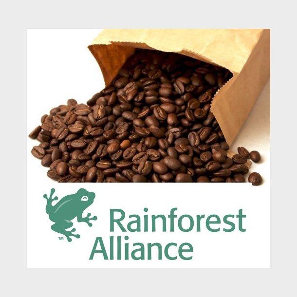 Kaffeabonnement - Guatemala Monte Cristo (Rainforest Alliance)