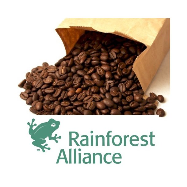 Kaffeabonnement - Guatemala Monte Cristo (Rainforest Alliance)