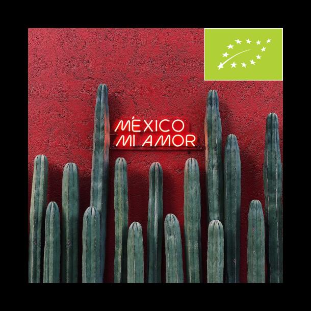 Mexico Chiapas (ØKO)