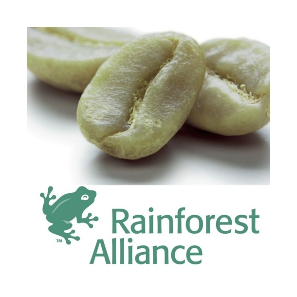 Guatemala RainForest Alliance SHB   [E]